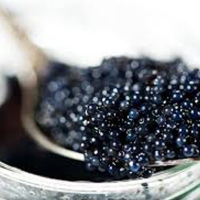 purcorganics - Caviar Extract Treatment 8