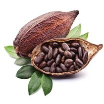 purcorganics - Cocoa seed butter